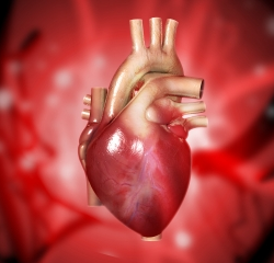 Siła serca
